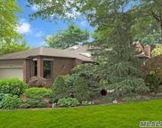 69 Estates Ter, Manhasset image