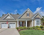 411  Harrier Crossing Circle, Fort Mill image
