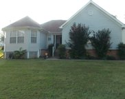 1601 Peppertree Ct, Antioch image