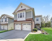 11024 Greenhead View  Road, Charlotte image