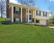 2705 Windford  Court, St Louis image