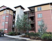 527 River Place Way Unit 538, Sevierville image
