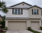 8819 Turnstone Haven Place, Tampa image