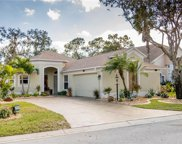 12906 Nightshade Place, Lakewood Ranch image
