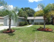 11509 Paperwood Place, Riverview image
