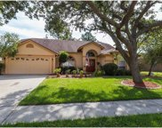9614 Glenox Lane, Riverview image