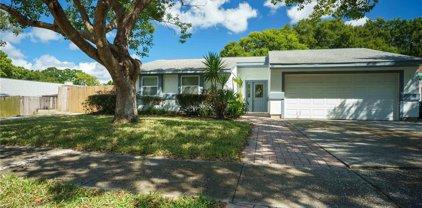 1052 Pepperidge Drive, Palm Harbor