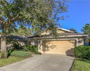 7022 Kendall Heath Way, Land O' Lakes image