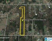 1275 Patton Road Unit 15 Acres, Bessemer image