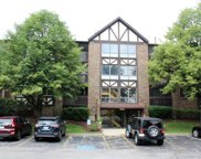 10351 Menard Avenue Unit 301, Oak Lawn image