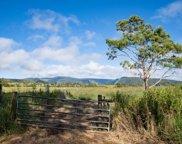 West Waikoekoe, HONOKAA image