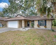 11710 Lynn Brook Circle, Seffner image
