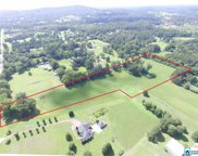 Blair Farms Rd Unit 7.8+/- Ac, Odenville image