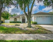 9905 Cypress Shadow Avenue, Tampa image