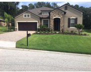 30228 Bretton Loop, Mount Dora image