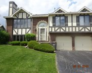 9314 Windsor Parkway Unit 9314, Tinley Park image