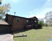 402 View Dr, Warrior image