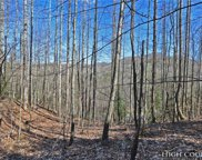 Lot A12 Quill Gordon Lane, Boone image