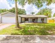 3206 Acapulco Drive, Riverview image