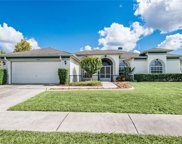 13002 Whitnell Way, Riverview image