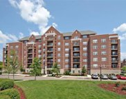 410 West Mahogany Court Unit 501, Palatine image
