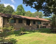 835 WINDWOOD COVES BOULEVARD, Mineral image