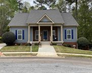 115 Cottage Grv, Peachtree City image