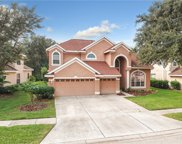 10219 Deercliff Drive, Tampa image