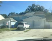 12335 Villager Court, Tampa image