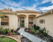 9211 Waterbird Drive, Riverview image