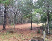 Lot 12 Red Maple Dr, Pawleys Island image