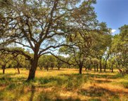 1450 Driftwood Valley Trail, Driftwood image