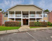4420 Jaybird Circle Unit #202, Wilmington image