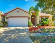6803 Guilford Crest Drive, Apollo Beach image