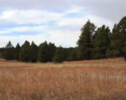 Tract 1, Custer image
