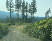 0 Unnamed Road, Snoqualmie image