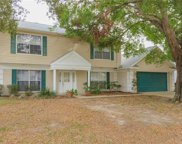 2615 Green Valley Street, Valrico image