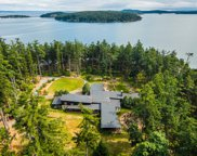 1 Trump Island, Decatur Island image