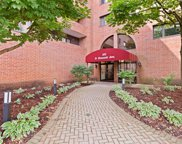 101 Summit Avenue Unit 413, Park Ridge image