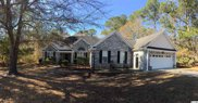 119 Raintree Ln., Pawleys Island image