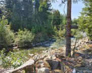 0 Lot 35 Crescent Beach Dr, Packwood image