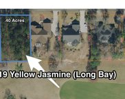 1073 Yellow Jasmine Dr., Longs image