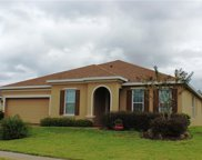 11313 Little Nellie Dr, Clermont image