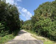 Limestone Road, Jupiter image