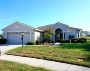 11803 Wayside Willow Court, Hudson image