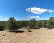 462 Redtail Trail, Texas Creek image