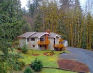 19513 200th Ave NE, Woodinville image