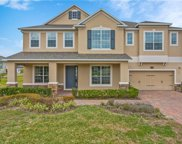 16209 Great Blue Heron Court, Winter Garden image