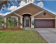 13712 Staghorn Road, Tampa image