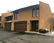 1728 Wildberry Drive Unit A, Glenview image